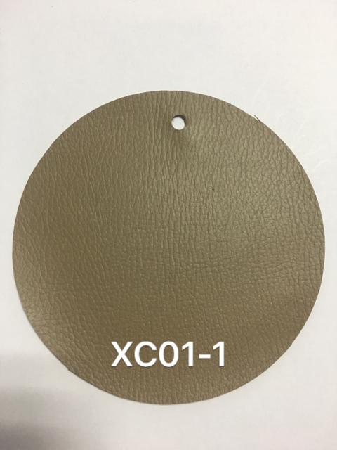 XC01-1